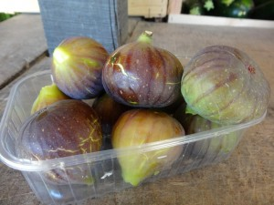 Figues grises