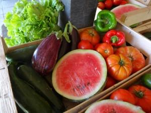 Panier légumes 20150819