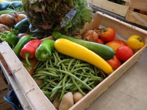 Panier légumes 20150826