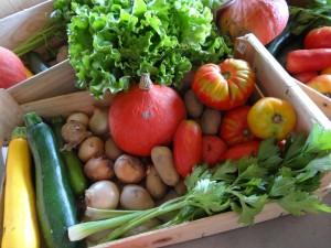 Panier légumes 20150902