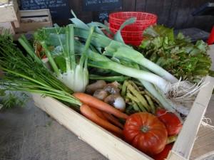 Panier légumes 20150916