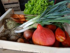 Panier légumes 20150923