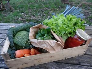 Panier légumes 20160113