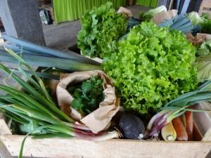Panier légumes 20160323
