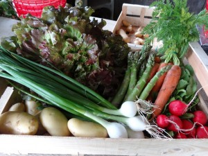 Panier légumes 20160601