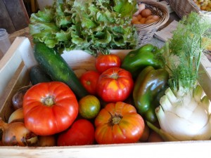 Panier legumes 20160824