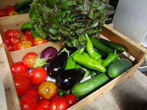 Panier légumes 20150729