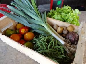 Panier légumes 20150909