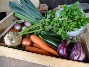 Panier légumes 20150930