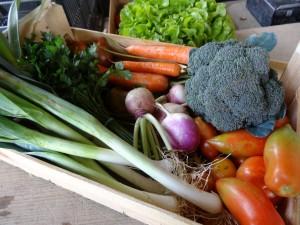 Panier légumes 20151014