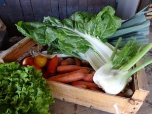Panier légumes 20151028