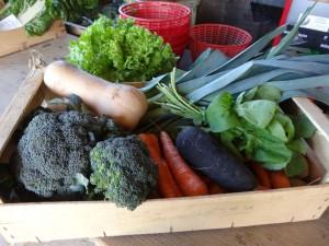 Panier légumes 20151104