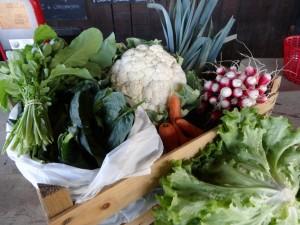 Panier légumes 20151230