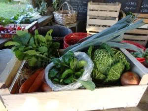 Panier légumes 20160127