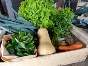 Panier légumes 20160210