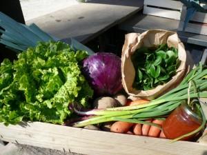 Panier légumes 20160330