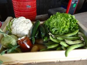 Panier légumes 20170503